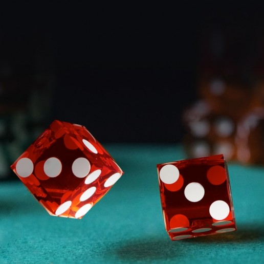 Price elasticity of demand for gambling